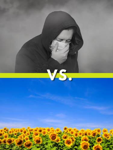 split comparison; a person coughing amid smoke versus flowers in a large sunny field